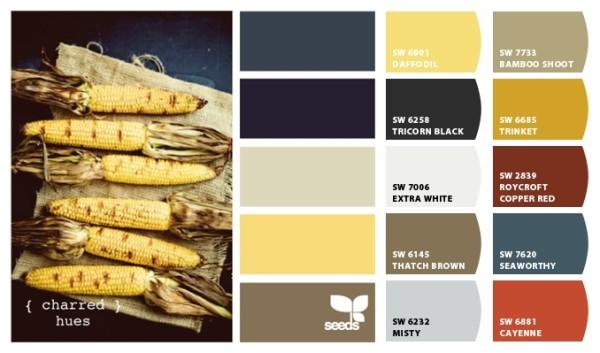 Mustard Field Yellow Color Scheme Image Schemecolor Mustard Color